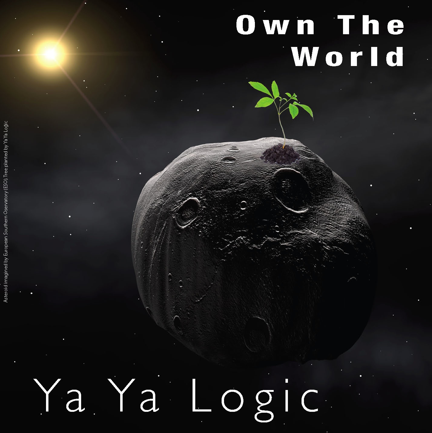Own the World Album Cover